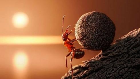 Boa parte do sucesso é persistência!