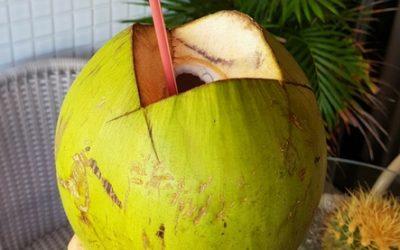 Água de coco e dieta low carb