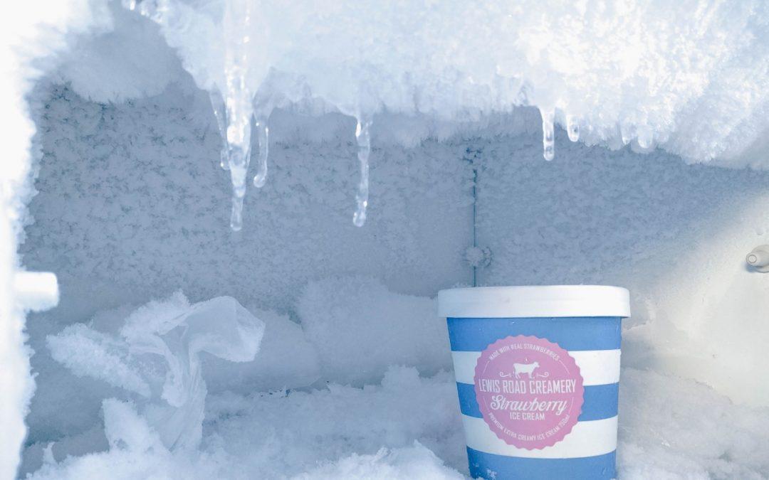 Quais alimentos não devem ser congelados?